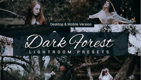 80 پریست لایت روم و کمرا راو و اکشن فتوشاپ و لات رنگی Dark Forest Lightroom Presets