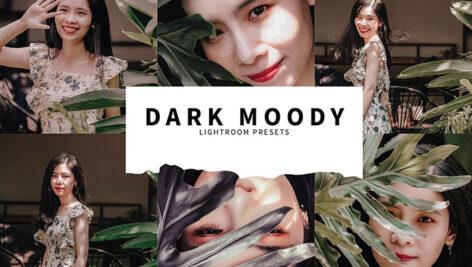 10 پریست لایت روم پرتره حرفه ای Dark Moody Lightroom Presets