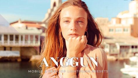 20 پریست لایت روم جهانگردی و مسافرت Anggun Lightroom Presets
