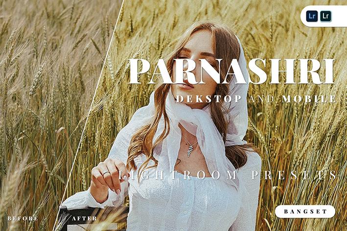 20 پریست لایت روم حرفه ای 2021 دسکتاپ و موبایل Parnashri Lightroom Preset