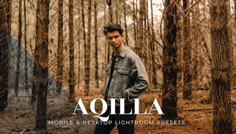 20 پریست لایت روم رنگی تناژ قهوه ای Aqilla Lightroom Presets