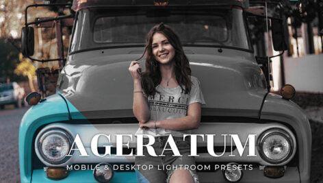 20 پریست لایت روم پرتره حرفه ای Ageratum Lightroom Presets