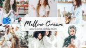 40 پریست لایت روم و پریست کمرا راو و اکشن فتوشاپ Mellow Cream Lightroom Presets