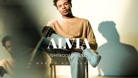 خرید 20 پریست لایت روم پرتره مردانه Alvia Lightroom Presets
