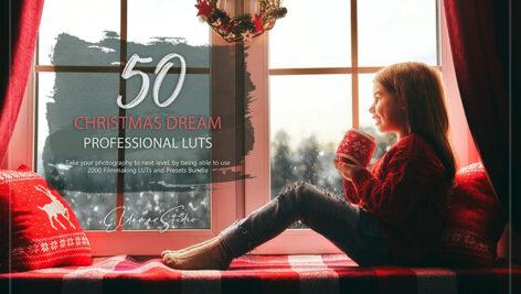 150 پریست لایت روم حرفه ای و LUTs رنگی کریسمس Christmas Dream LUTs and Presets Pack