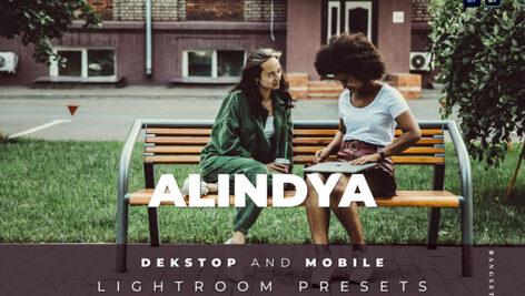 20 افکت رنگی لایت روم دسکتاپ و موبایل Alindya Lightroom Preset