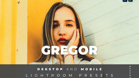 20 افکت رنگی لایت روم دسکتاپ و موبایل Gregor Lightroom Preset