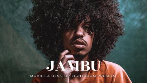 20 پریست لایت روم تم استایل زندگی Jambu Lightroom Presets
