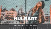 20 پریست لایت روم حرفه ای مدلینگ Hulbart Lightroom Preset