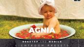 20 پریست لایت روم رنگی تم زرد Agnia Lightroom Preset