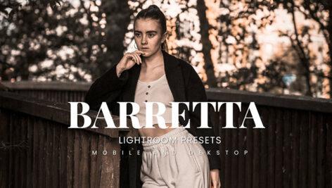 20 پریست لایت روم رنگی پرتره حرفه ای Barretta Lightroom Presets