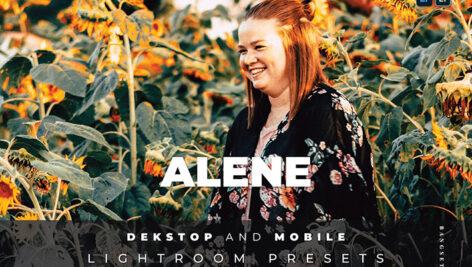 20 پریست لایت روم پرتره حرفه ای Alene Lightroom Preset