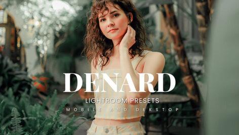 20 پریست لایت روم پرتره فضای باز Denard Lightroom Presets