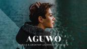20 پریست لایت روم پرتره 2021 حرفه ای Aguwo Lightroom Presets