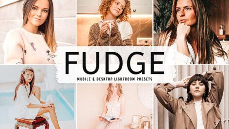 40 پریست لایت روم پرتره تم شکلاتی و پریست کمرا راو و اکشن فتوشاپ Fudge Lightroom Presets