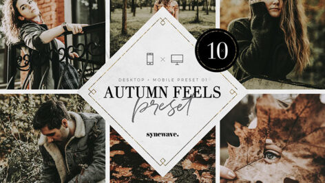 10 پریست لایت روم پاییز تم احساس پاییزی Autumn Feels Lightroom Presets