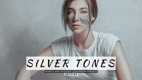 20 پریست لایت روم رنگی حرفه ای تم نقره ای Silver Tones Lightroom Presets