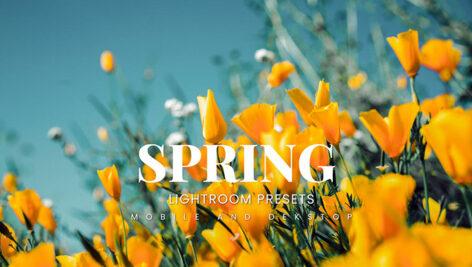 20 پریست لایت روم رنگی حرفه ای فصل بهار Spring Lightroom Presets