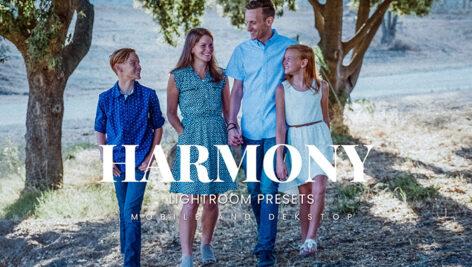 20 پریست لایت روم رنگی حرفه ای Harmony Lightroom Presets