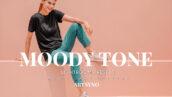 20 پریست لایت روم رنگی حرفه ای Moody Tone Lightroom Presets