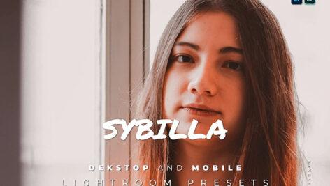 20 پریست لایت روم رنگی حرفه ای Sybilla Lightroom Preset