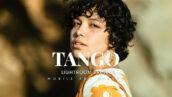 20 پریست لایت روم رنگی حرفه ای Tango Lightroom Presets