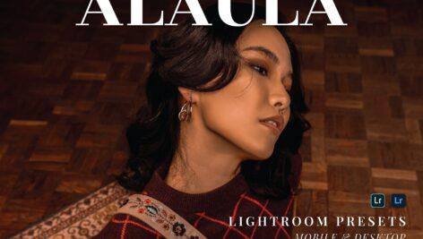 20 پریست لایت روم پرتره حرفه ای Alaula Lightroom Presets