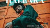 20 پریست لایت روم پرتره حرفه ای Haleaka Lightroom Presets