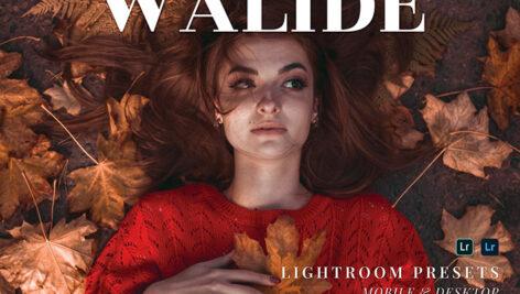 20 پریست لایت روم پرتره حرفه ای Walide Lightroom Presets