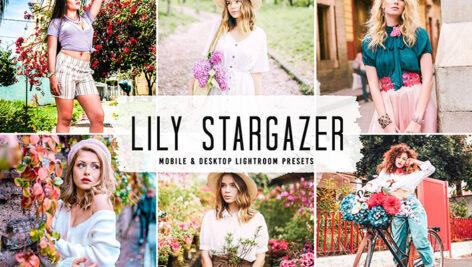 40 پریست لایت روم پرتره و پریست کمرا راو و اکشن فتوشاپ Lily Stargazer Lightroom Presets