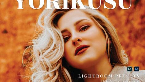 20 پریست لایت روم پرتره حرفه ای تم رنگ گرم Yorikusu Lightroom Presets