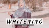 20 پریست لایت روم پرتره حرفه ای تم روشن Whitening Lightroom Presets