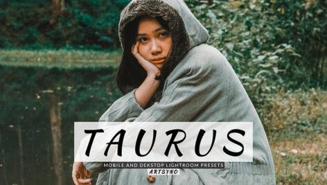 20 پریست لایت روم پرتره حرفه ای Taurus Lightroom Presets